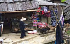 Sapa (drloewe) Tags: mountains landscape hiking vietnam landschaft sapa gebirge canoneos50d
