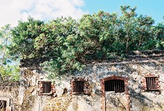 Prison (Procrastixote) Tags: new french ruins day decay cell ile sunny pins des prison pines jail block isle nouvelle caledonia overgrowth jailhouse caledonie cellhouse