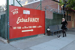 Extra fancy (new folder) Tags: usa dog newyork brooklyn typography williamsburg extra extrafancy rightarrow