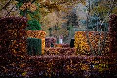 fall in love (=Я|Rod=) Tags: autumn fall 9 explore bremen olympusomd rhododenronpark lumix3510028 ©reinerrodekohr