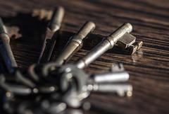 Day 1 - Skeleton Keys (AngeStar) Tags: day1 skeletonkeys 2014yip