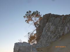 P1030754 (jalil_aa) Tags: playa bajacalifornia piedras sanluisgonzaga