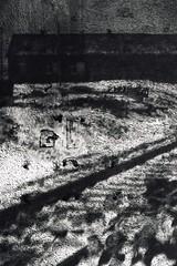 (faustine monteil) Tags: leica blackandwhite cemetery shadows noiretblanc trix streetphotography rodinal 3200 90mm argentique ombres cimetière leicam6