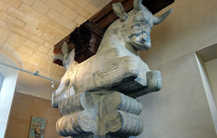View of Capital of a column from the audience hall of the palace of Darius I, c. 510 B.C.E.