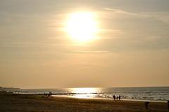 Nieuwpoort (Nele_Bieseman) Tags: sea sun beach water strand belgium belgique belgi zee westvlaanderen zon nieuwpoort