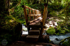 Dragon Hunter (Jeffery P.) Tags: bridge oregon river mt hiking salmon trail hood wilderness