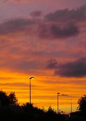 inthistwilight (ianlarossa) Tags: sunset red orange sun colors yellow lights warm streetlights warmcolors