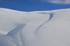 Dunes Of Snow (Enrico.ico) Tags: blue white snow cold ice nikon wind blu dunes dune neve duna azzurro bianco freddo vento enrico ghiaccio d3200