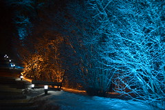 +++DSC_1815 (Anastasiya Turlaeva) Tags: winter snow nature hotel nice paradise dream    freshwind