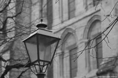 (planetphoto.fr.ht) Tags: sky rock de switzerland tour suisse pierre structure lausanne notredame cathdrale ciel brique neige eglise protestant gargouille batiment croix patrimoine vaud historique gardien statut tuille prire collgiale switzera