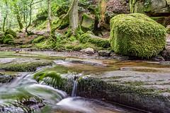 Monbachtal (MSPhotography-Art) Tags: trees fall nature creek forest trekking germany landscape deutschland waterfall rocks wasserfall outdoor natur canyon hike steine fluss landschaft schwarzwald blackforest wandern tal wanderung badenwrttemberg
