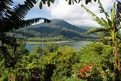 Lac de Volcan---Lake of Volcano (geolis06) Tags: bali landscape asia asie paysage indonsia 2015 indonsie munduk danaubuyan baliricefield volcanolake balilandscape danautamblingan olympusomdem5 olympusm1240mmf28 geolis06 paysagebali lacdevolcan