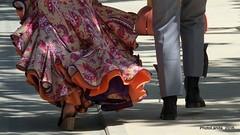 Feria de Granada, 2016 (Landahlauts) Tags: caballo fiesta corpuschristi feria andalucia granada sombrero andalusia corpus andalusien andalousie amazona andalusie columpios caseta ferial andaluzia andalusi cacharritos  andaluzja almanjayar andaluzio  trajedegitana caballista   endls   endulus trajedecorto trajedefaralaes  feriadelcorpus feriadegranada    andalouzia andalusiya ferialdealmanjayar  fujifilmxpro1 feriadelcorpusdegranada trajedevolantes nf  fujifujinonxf55200mmf3548rlmois