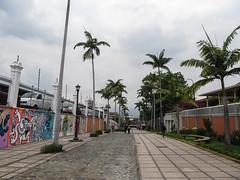 """San José: une rue piétonne de la capitale menant au Parque Nacional <a style=""""margin-left:10px; font-size:0.8em;"""" href=""""http://www.flickr.com/photos/127723101@N04/26791070461/"""" target=""""_blank"""">@flickr</a>"""