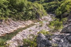 The lost valley (Leonardo Del Prete) Tags: creek river landscape fiume valle valley marche paesaggio bosso torrente cagli