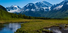 Eagle River Valley (Eisbier) Tags: blue trees sky panorama green nature water alaska nikon scenery stream valley d750 nikkor tributary nikkor70200mm rei1440project
