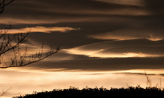 looking for my compass (keith midson) Tags: sunset sky cloud clouds canon branch sigma 10d tasmania hobart 150500mm