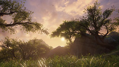 Sunrays (Dumigor) Tags: sun game digital screenshot gras ps4 uncharted