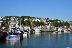 Le port de Trouville-sur mer (florence.V) Tags: mer france port 14 bateaux normandie calvados manche trouvillesurmer