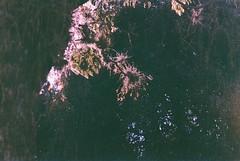 Autumn (alvarogeorg) Tags: film analogic 35mm exakta exaktavarex exaktavarexiia ihagee carlzeissjena tessar konicafilm konicavx konicavx400 expiredfilm lomoeffect autumn morning morninglight colorfilm