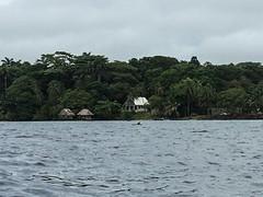 "Bocas del Toro: un dauphin ! <a style=""margin-left:10px; font-size:0.8em;"" href=""http://www.flickr.com/photos/127723101@N04/27333212965/"" target=""_blank"">@flickr</a>"