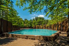 Meditation Pool Fort Worth Water Gardens (R3D_Photography) Tags: blue trees water pool texas tx calming cypress meditation fountains philipjohnson fortworth johnburgee fortworthwatergardens r3dphotography raysheleyiii