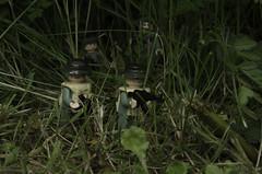 Ambush (LegoLee) Tags: usa soldier war lego military vietnam jungle bradbury laos ambush nva
