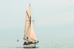 013 Ostrea Rose Classic Race - Ann Vanoverschelde IMG_6071