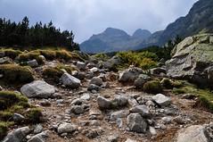 DSC_9973 (szymek_ka) Tags: bulgaria ria bugaria