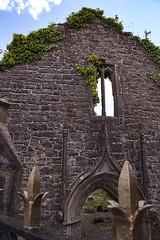 Church ruins in Ballina (photographycmh) Tags: ireland mayo ruin ruine ruina klosterkirche rovine kloster klosterruine abbey abbaye abtei abbazia augustinian monastery monastero monasterio abadia klossterruine monastère mosteiro klasztor klášter