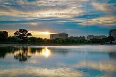 2016-06-18 18.25.49 (pang yu liu) Tags: park reflection pond dusk 06 pate jun yzu  2016