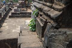 Angkor Thom, Siem Reap, Cambodia (silkylemur) Tags: canon lens asia cambodia southeastasia angkorwat vietnam fullframe siemreap angkor canoneos zoomlens llens 24105mm canonef canonef24105mmf4l canonef24105mmf4lisusm  eflens canonef24105mmf4lisusmlens efmount canoneos6d krongsiemreap