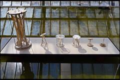 fungal futures - mycelium tectonics 01 tabellini g (universiteitsmuseum utrecht 2016) (Klaas5) Tags: holland netherlands dutch expo nederland exhibition tentoonstelling biodesign vormgeving universiteitsmuseumutrecht contemporarydesign universitymuseumutrecht picturebyklaasvermaas fungalfutures