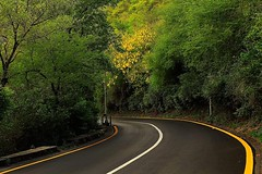 In every outthrust headland, in every curving mountain, in every grain of sand there is the story of the earth~!!  #monday #evening #ramadan #at #damn_e_koh #peaceful #atmosphere #mountain #sky #tress #clouds #white #yellow #curving #road #lines #nature # (Gillaniez) Tags: road sky plants white mountain love nature smile lines yellow clouds evening sand focus quote peaceful atmosphere story monday ramadan tress curving damnekoh earthshotz princelyshotz worldbestsky earthescape igfotografart