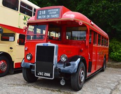 TD95 JXC288 (PD3.) Tags: bus london buses museum vintage coach transport surrey trust preserved 95 preservation leyland psv pcv td 288 brooklands 2016 td95 jxc288 lbpt jxc cobhaml