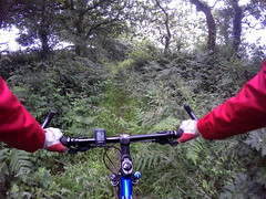 G0115116 (Photopedaler) Tags: rural woodland countryside pov path bicycleriding gopro cornishcycling