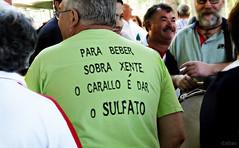 Unha verde verdade (Franco DAlbao) Tags: people truth fuji fiesta gente wine joy drinking tshirt partying fair galicia gallegos juerga camiseta vigo vino alegra beber verdad romera troula dalbao francodalbao galicians