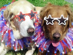 Team Louisiana Startup Prize wants to wish you all a HAPPY HAPPY HAPPY 4th of July! Enjoy those hot dogs and hamburgers-and maybe some tequila too! VIVA!