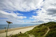 Curracloe Beach, Wexford, Ireland. (Jay Jay Kane) Tags: carlzeisstouitdistagon2812t ireland zeiss beach wexford curracloe