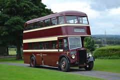Warrington 27 EED5 (Clifton009) Tags: warrington 27 eed5 leyland titan pd1