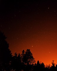 Fire. (Ms. Melissa Methamphetamine) Tags: longexposure sky orange canada nature newfoundland stars fire nikon silhouettes arbres treeline etoiles d80 Astrometrydotnet:status=solved Astrometrydotnet:version=14400 Astrometrydotnet:id=alpha20130572100017