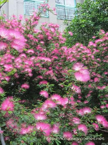 竹林山觀音寺-IMG_9544-040