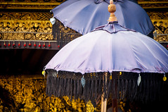 the violet parasols (raspberrytart) Tags: bali indonesia temple nikon purple umbrellas besakih parasols rendang d90