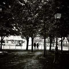We're still in the dark (vieweronline) Tags: trees light paris contrast dark silhouettes iphone iphoneography snapseed