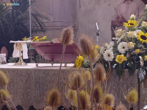 VV-S Gregorio d'Ippona-Chiesa di S Ruba - 02_L