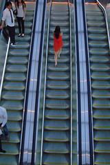 Op en neer / Ups and downs (Carel van der Lippe) Tags: up escalator down roltrap