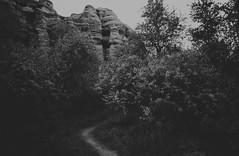 Where am I going? (Linus Wrn) Tags: leica blackandwhite bw monochrome turkey mono blackwhite hiking path trail bushes cappadocia kapadokya leicadlux5
