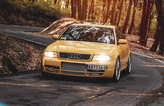 Audi S4 Photoshoot (Ni.St Photography) Tags: cars car forest hp woods photoshoot serbia twin turbo b5 belgrade audi beograd v8 s4 rs4 v6 r8 rs6 v12 srbija avala nist