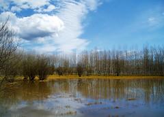 No cal anar tan lluny (jocsdellum) Tags: winter sky water clouds landscape agua cel girona cielo nubes invierno catalunya aftertherain aigua paisatge nvols laselva hivern despusdelalluvia desprsdelapluja estanysdesils