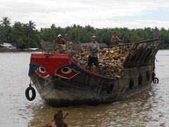 P2010930 (Gareth's Pix) Tags: boat coconut vietnam bentre mekiongdelta